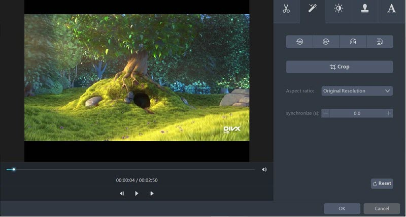 Video Master adjust feature