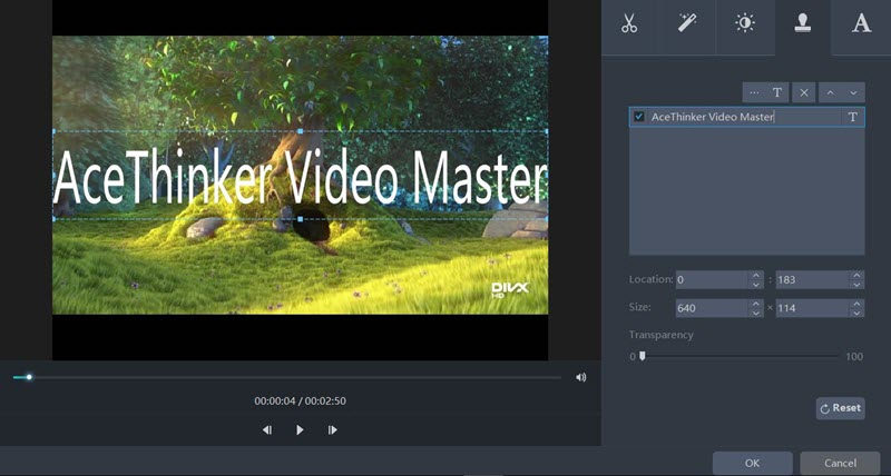 Video Master watermark feature