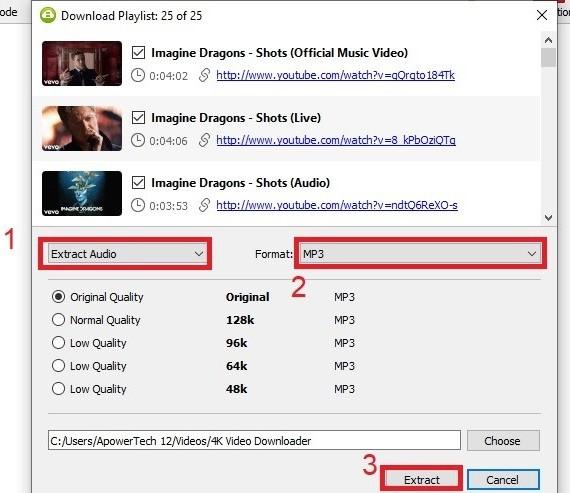 YouTube-Wiedergabeliste konvertieren