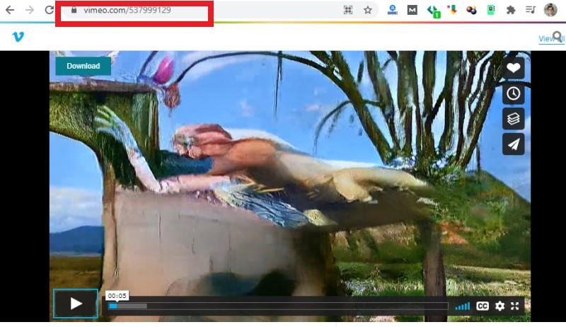 download livestream video vk copy link