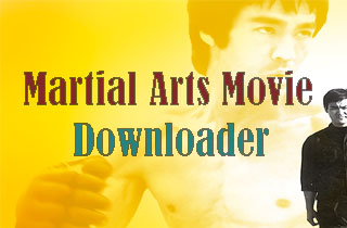 How Can I Download Martial Arts Movies and Watch it on Computer?