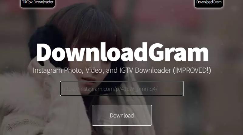 downloadgram interface