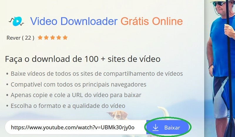 paste video link