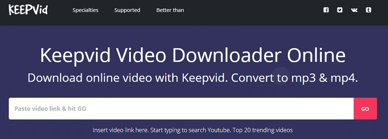 keepvid interface