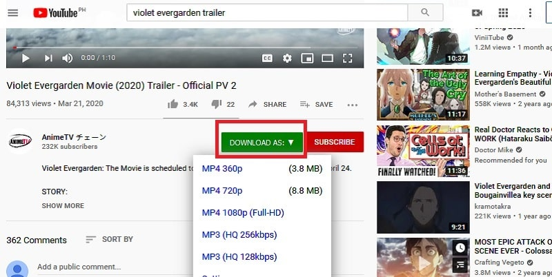 Extension-Downloader-Schritt2
