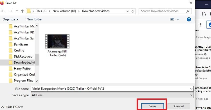 Extension-Downloader-Schritt3