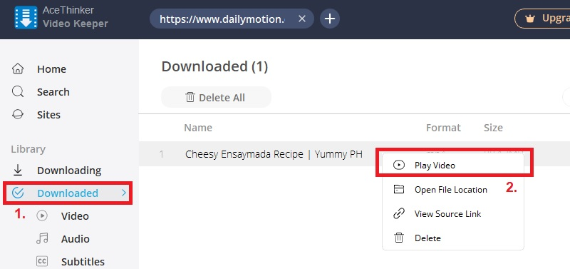 dailymotion video downloader vk step3