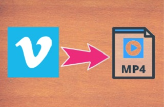 Full Guide on How to Convert Vimeo to MP4