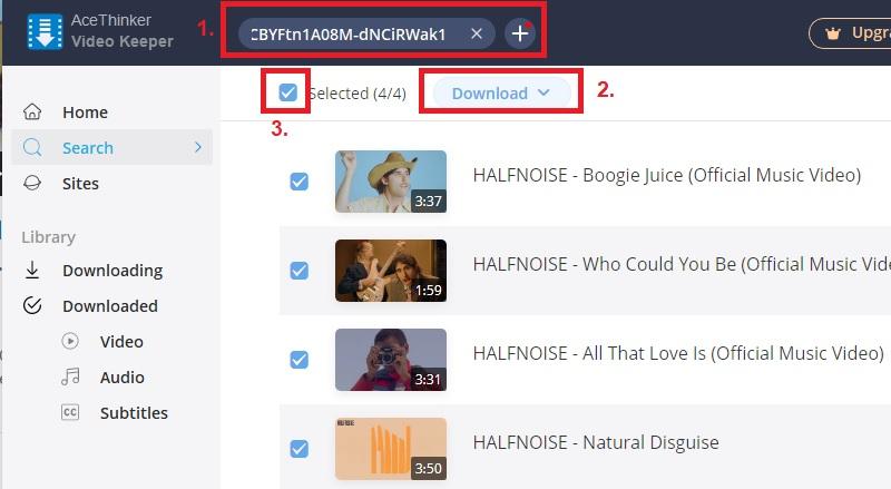 vk paste youtube playlist url