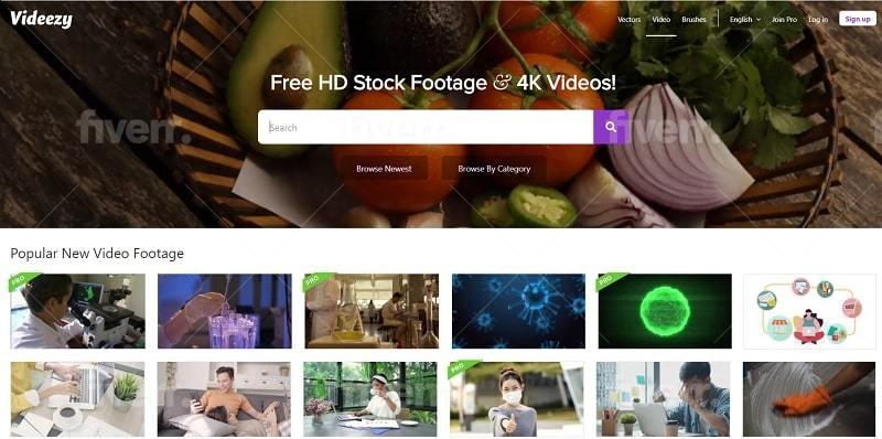 videezy interface