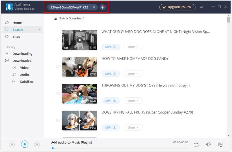paste YouTube playlist