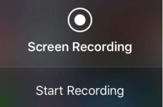 record part of screen feature