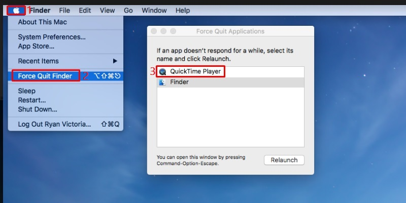 force quit quicktime