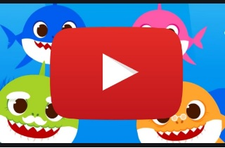 download baby shark video feature-2
