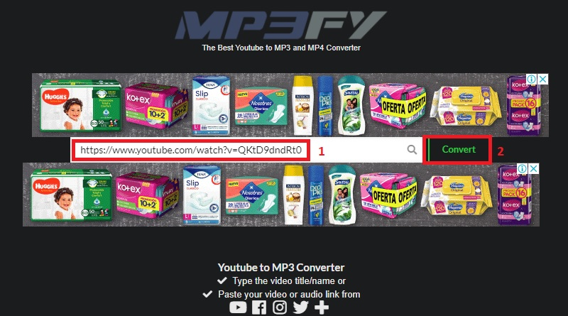 mp3fy paste youtube link
