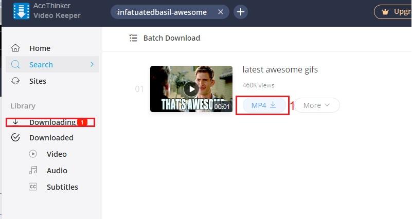 download gfycat video vk step 4
