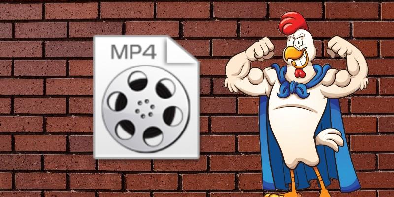 mp4 vs wmv mp4 image