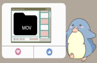 Top 6 Beneficial MOV Video Editor
