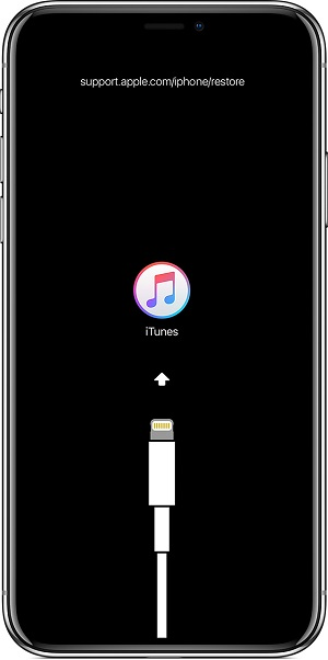 iphone x green line of death itunes logo