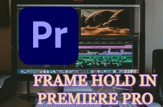 feature freeze frame in premiere pro