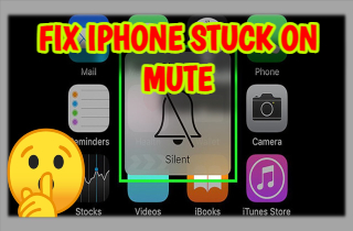 feature iphone stuck on mute
