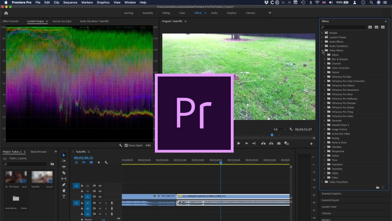 freeze frame in premiere pro interface